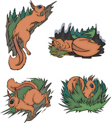 Comic squirrels