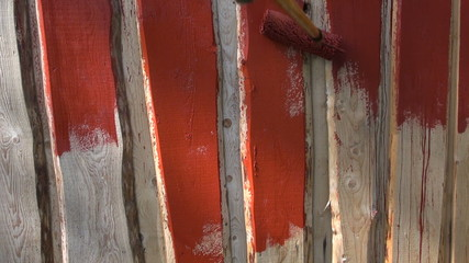 paint wooden farm barn wall with paint roller