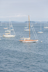 White Sailboats with Empty Masts