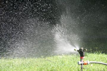 Rasen gießen