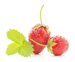 Two strawberries with leaf