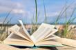 Leinwanddruck Bild - Zeit zum Lesen - Urlaub