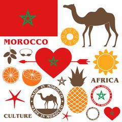 Morocco. Camel