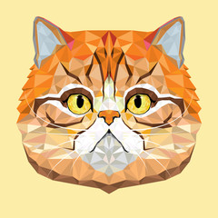 Persian Cat vector polygon geometric