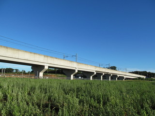 草地と高架橋