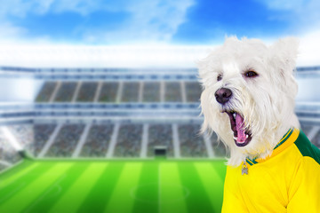 Brazilian west dog screaming goal