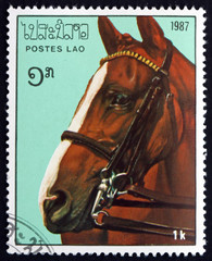 Postage stamp Laos 1987 Horse head