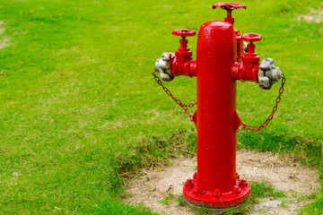 old hydrant in the garden, green grass