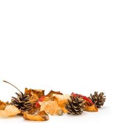 Herbstarrangement mit Textfreiraum