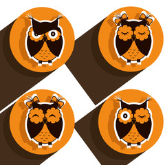 Four icons with brown owls
