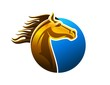 horse logo,silhouette shape,pet,race business icon