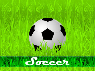 Soccer illustration with ball on the green background
