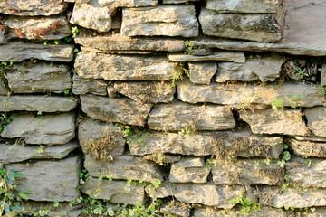 Dry stone wall. Dhampus-Nepal. 0491