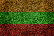 Lithuania Flag color grass texture background