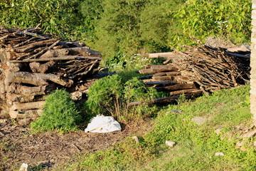 Firewood stacks-evening sun. Dhampus-Nepal. 0497