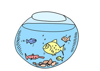 doodle aquarium