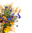 Bouquet from ears and field flowers isolated on white background - 67014679