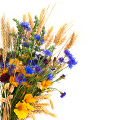 Bouquet from ears and field flowers isolated on white background