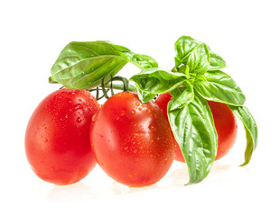Red tomato and green leaf of basil, with water drops isolated on