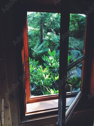 canvas print picture fenster in natur