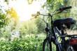 Leinwandbild Motiv Fahrrad in der Natur