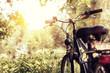 abgesteltes Fahrrad im Sonnenlicht - 67016828