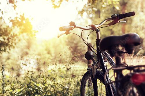 Tuinposter Fietsen abgesteltes Fahrrad im Sonnenlicht
