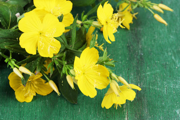 Beautiful yellow wild flowers  color wooden background