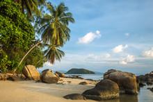A beautiful tropical beach with palm trees at Koh Phangan island