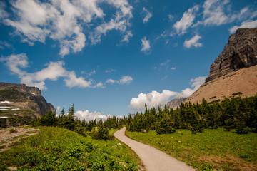 Walkway at Logan Pass