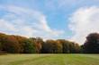 Herbstbäume und Grünfläche