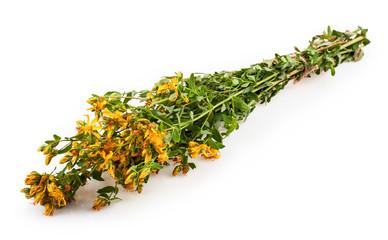 plants bouquet