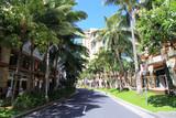 ハワイ ワイキキビーチウォーク - 67020665