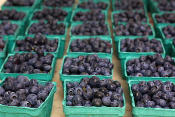 Blueberry Baskets
