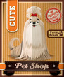 Vintage Pet shop poster set design