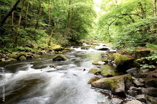 Leinwanddruck Bild der Fluss Bode im Nationalpark Harz
