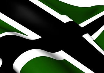 Vinnland Flag