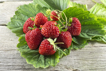 Pile of ripe strawberries on green leaves
