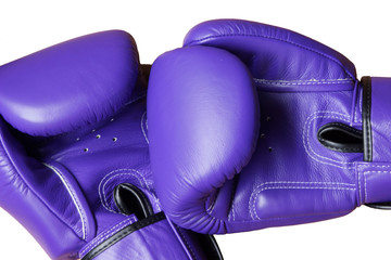 Pair of Purple Leather Boxing Glove Isolated on White Background