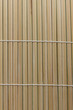 Nature bamboo - background
