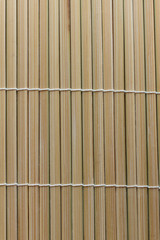 Nature bamboo - background