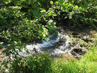 У горного ручья в жаркий летний день