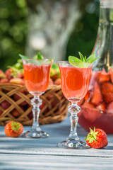 Homemade strawberry liqueur with mint