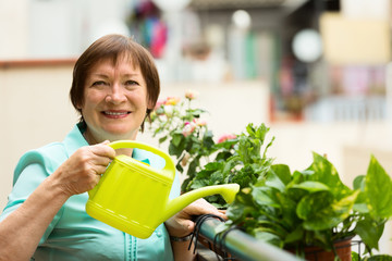 Portrait of mature housewife watering domestic plants