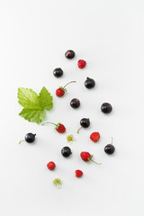 Black Currants and Wild Strawberries