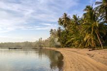 A tropical beach with palm trees at Koh Phangan island, Thailand