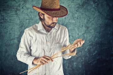 Farmer with cowboy straw hat holding wheat ears