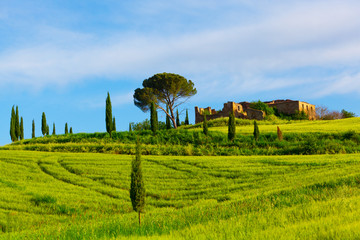 Beautiful summer rural landscape of Tuscany. Italy