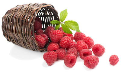 Raspberries with leaves  fall of the basket