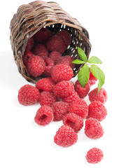 Raspberries spilling out of basket